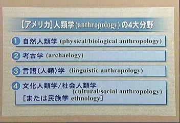 文化人類学('04)